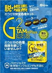 10-28-G2tam-A4-A
